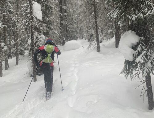 Backcountry Skiing & Snowboarding