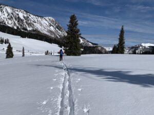 backcountry nordic skiing