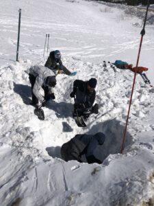 avalanche school